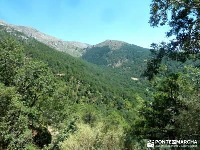 Garganta de Nuño Cojo-Piedralaves; parque natural del alto tajo nacimiento del rio cuervo cuenca